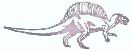 spinosaur profile