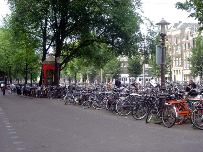 lotsa bikes!